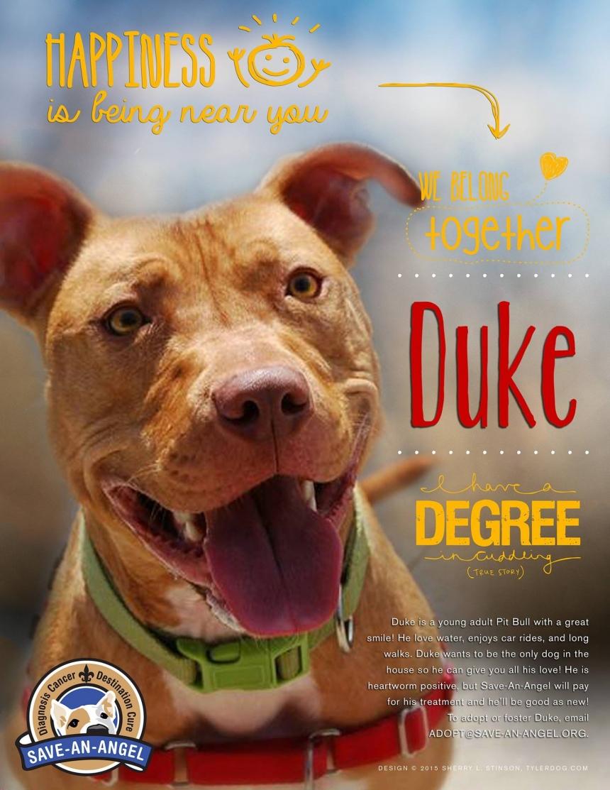 Happy Duke